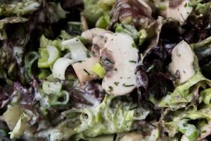 Blattsalat mit Champignons
