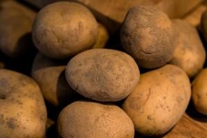 Kartoffeln vom Kartoffelhof